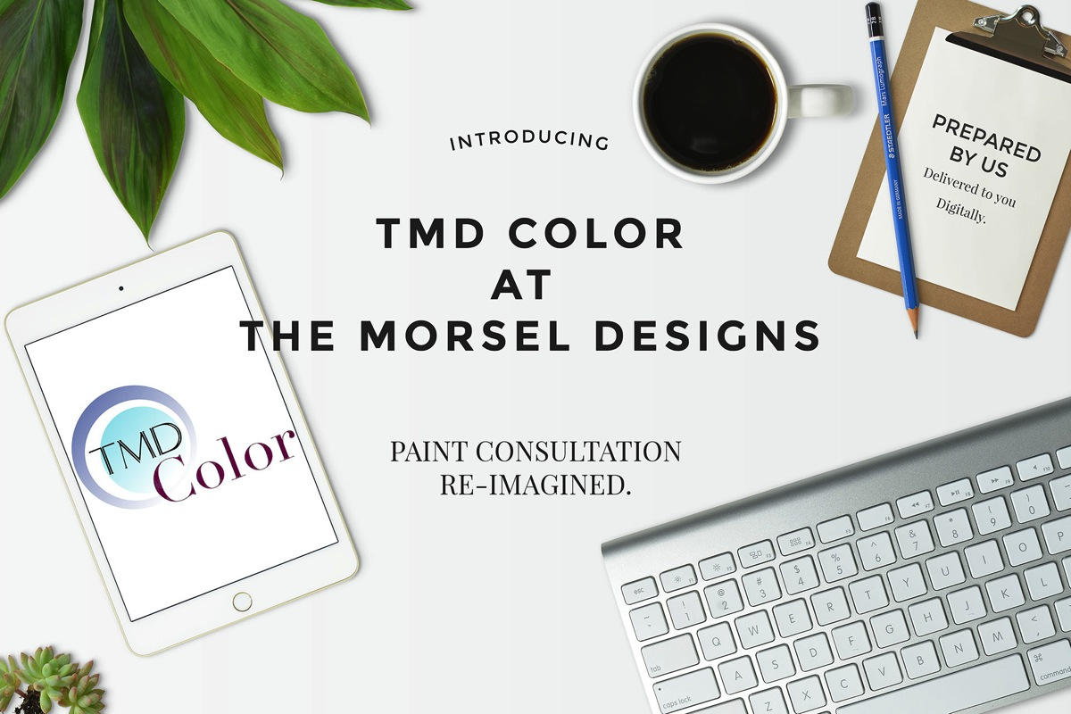 Introducing TMD Color Paint Consultation