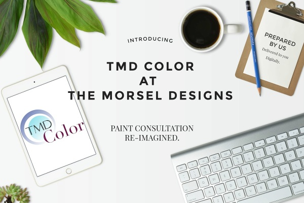 TMD Color at The Morsel Designs